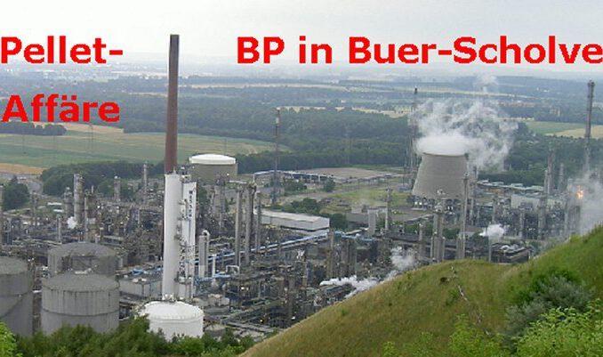 Ölpellets und die schützenden Behördenhände