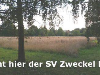SV Zweckel Fußballverein
