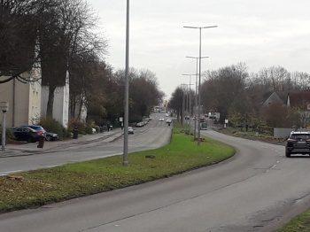 Die Wiesmannstraße nach der Fällaktion