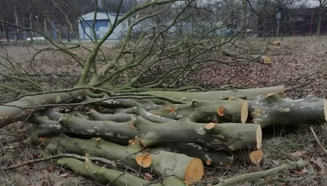 Klimanotstand in Gladbeck