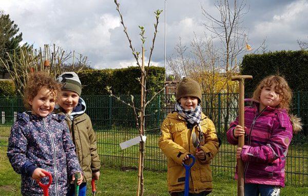 Kreis schenkt Kitas 150 Obstbäume
