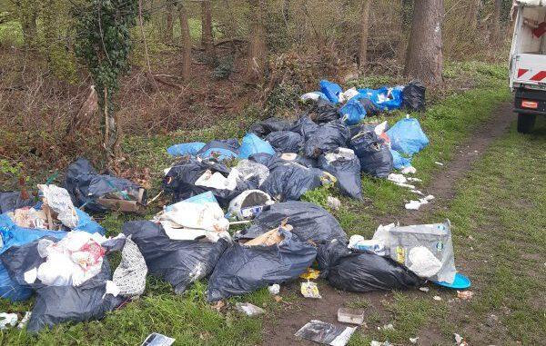 Müllsheriffs hatten Erfolg