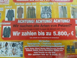 Wir kaufen Ihre Pelze! * Prospekte in Gladbeck verteilt